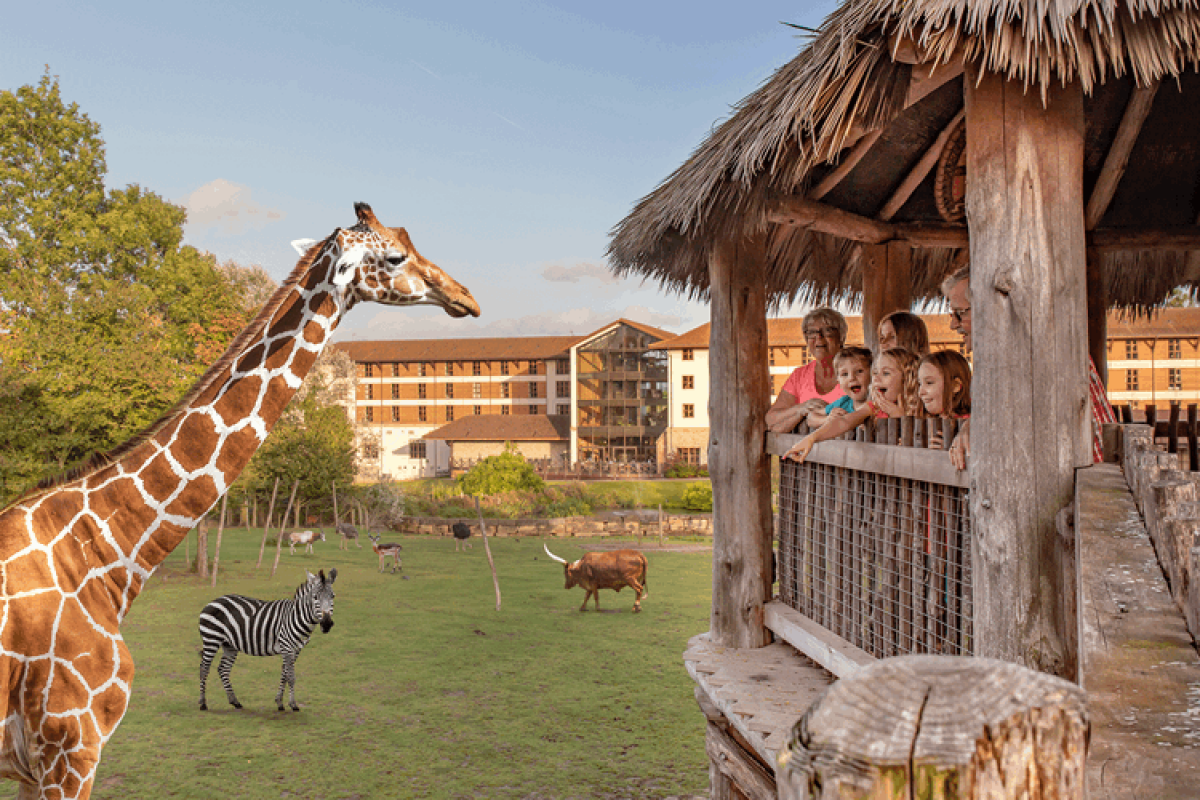 Chessington Holiday Special Offers
